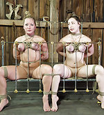 Two sluts roped together and made to cum in unison