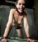 Cuffed, tied with leather, tits-clamped and ass-plugged