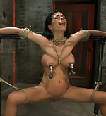 Sexy thin girl with huge boobs gets roped and clamped