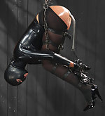 Leather suspensions, latex encasement, ass hook