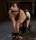 Metal-bound in doggy style, caned and dildoed