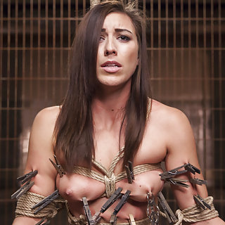 All natural beauty roped, pegged, trained, deep fucked