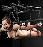 Suspended & railed hard in pile driver in metal shackles