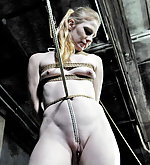 Stripped, roped, strapped and dildoed