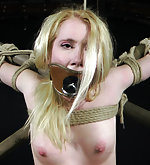 Roped, hogtied, suspended, clamped and dildoed